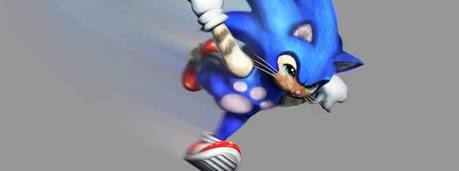 sonic-the-hedgehog-monster-hunter-4-ultimate