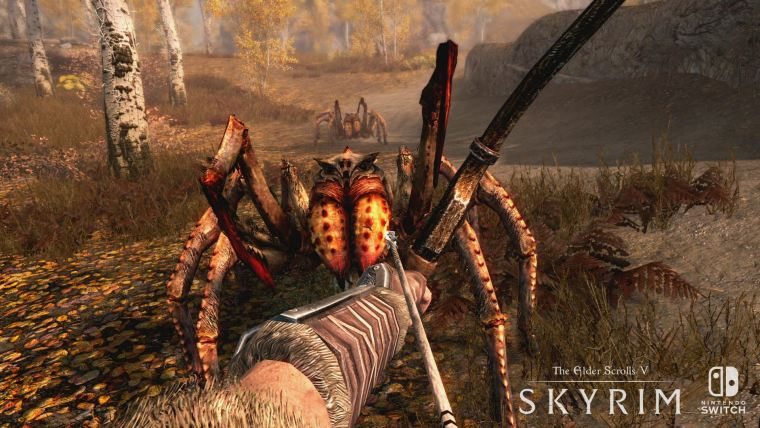 the-elder-scrolls-v-skyrim-nintendo-switch-screenshot-6