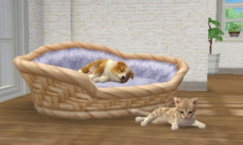 nintendogs-and-cats-review-screenshot-1