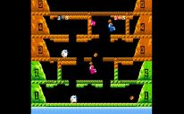 Arcade Archives Ice Climber Screenshot