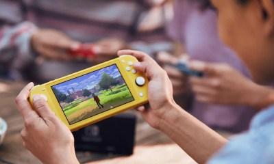 Nintendo Switch Lite Gameplay Photo