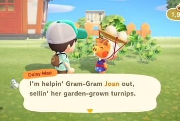 Animal Crossing New Horizons Turnips Screenshot