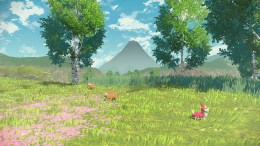 Légendes Pokémon Arceus (6)