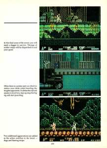 Game Player's Encyclopedia of Nintendo Games page 205