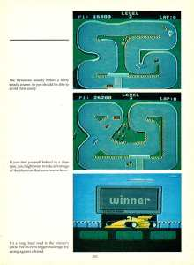 Game Player's Encyclopedia of Nintendo Games page 255