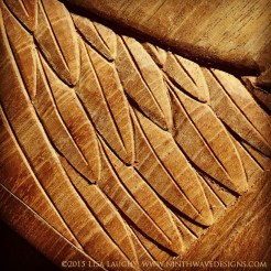 A detail of the feathers from one of the ravens.