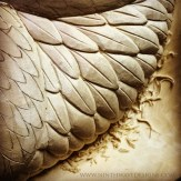 Feather carving creates lots of tiny wood chips.