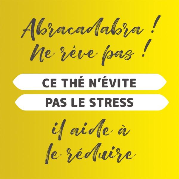 Thé bien-être pour combattre le stress naturellement
