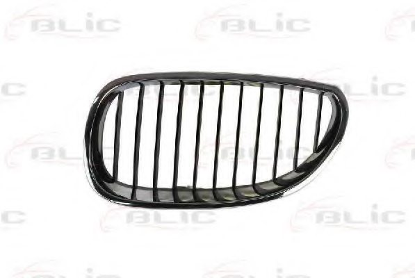 51137027061,BMW 51137027061 Radiator Grille for BMW