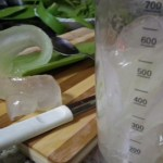 Use the blender to turn the Aloe Vera mucilage into an homogeneous gel