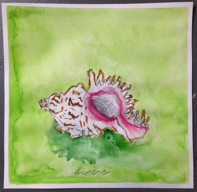 WATERCOLOUR_SHELL_04