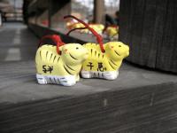 Johan's & Chie's tigers