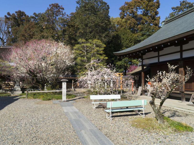 Des bancs attendent les visiteurs près de l'ishi hyakudo.