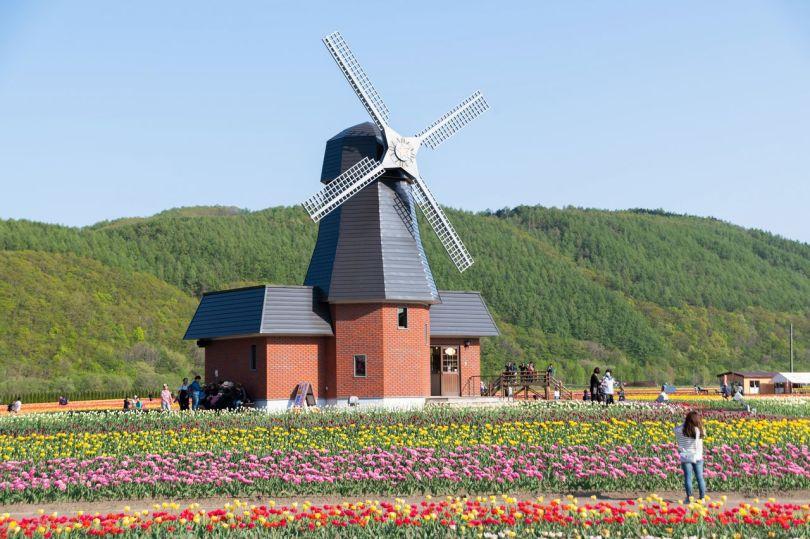 Ce moulin à vent de style hollandais est le symbole du parc à tulipes de Kamiyūbetsu.