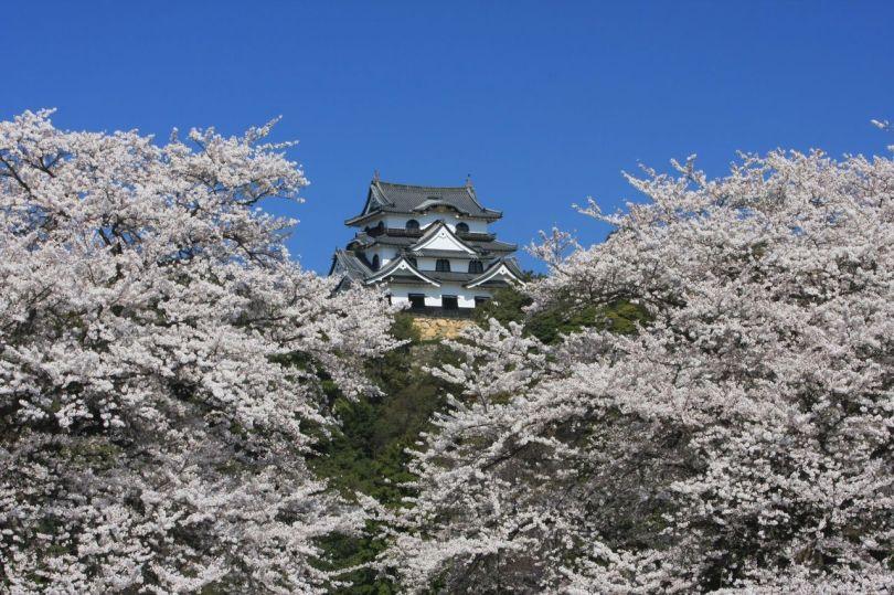 (Avec la permission de l'Office de tourisme de Biwako)
