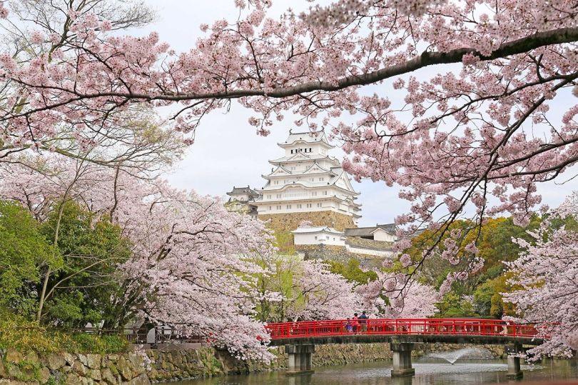 (Avec la permission du gouvernement municipal de Himeji)