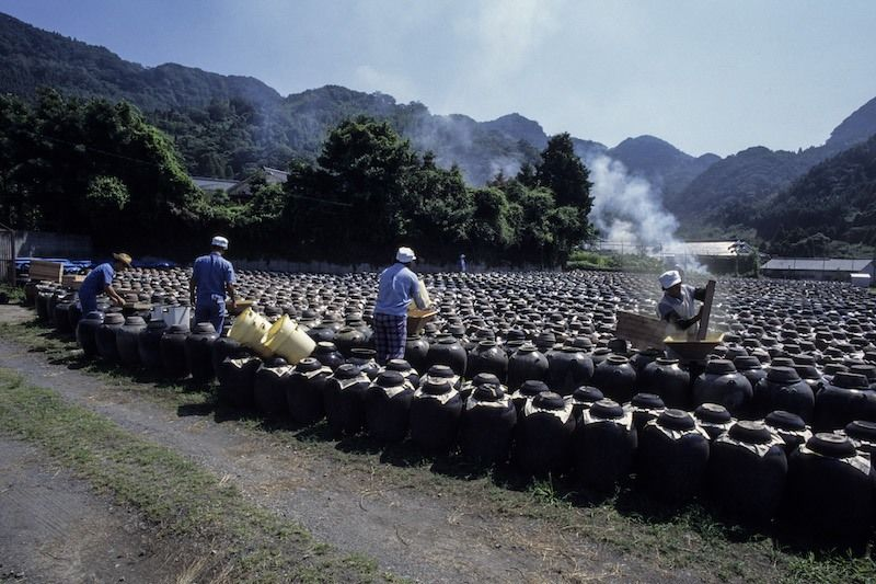 Kurozu rice vinegar matures in black ceramic jars in Fukuyama, Kagoshima Prefecture. The artisans adhere to traditional methods, leaving the liquid to ferment and age slowly in the sun. ©Ōhasshi Hiroshi