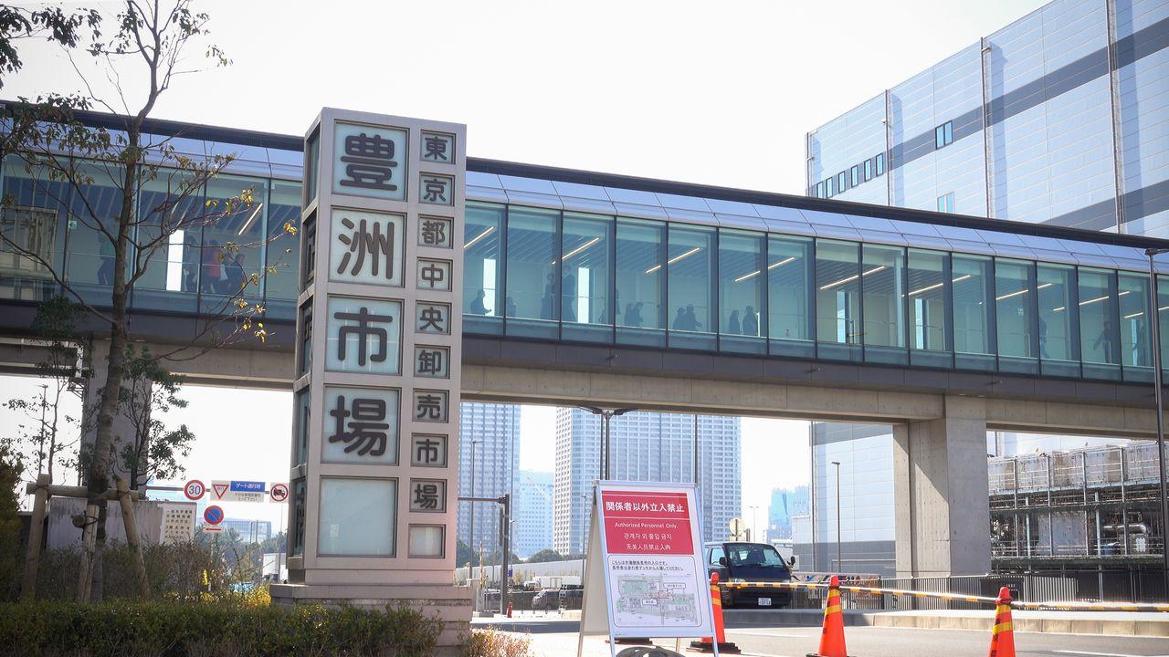 豐洲市場開張半年:顧客抱怨「買不到魚」。競標漁獲的參觀人數低迷 | Nippon.com