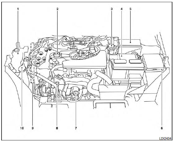 Nissan Rogue Owners Manual: Engine compartment check