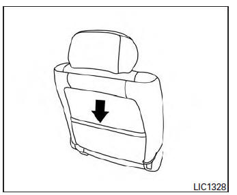 Nissan Sentra Owners Manual: Seatback pockets (if so