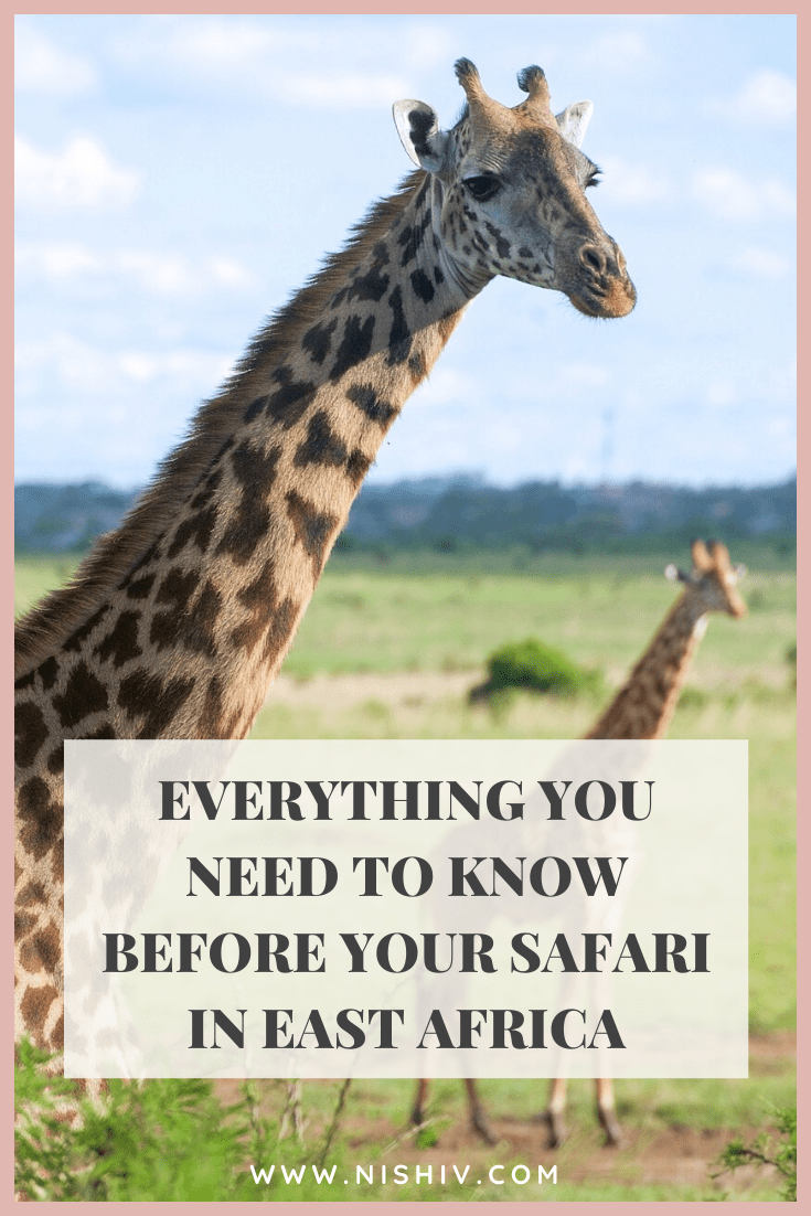 3 Important Things You Should Know Before Booking A Safari In Kenya, Nishi V