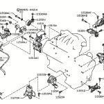 2009 Nissan Murano Engine Diagram Polaris Explorer 400 Wiring Diagram Bullet Squier Tukune Jeanjaures37 Fr
