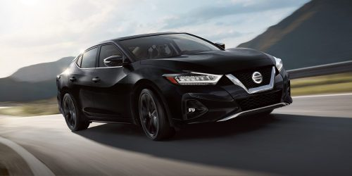 small resolution of 2019 nissan maxima in super black on curving road