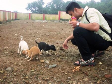 Amitav feeding the puppies