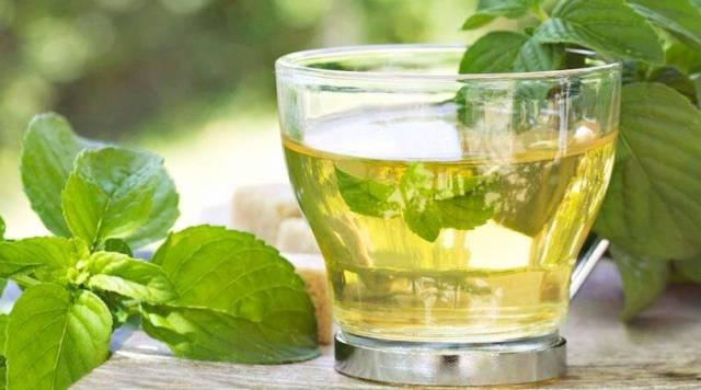 detox for weight tea