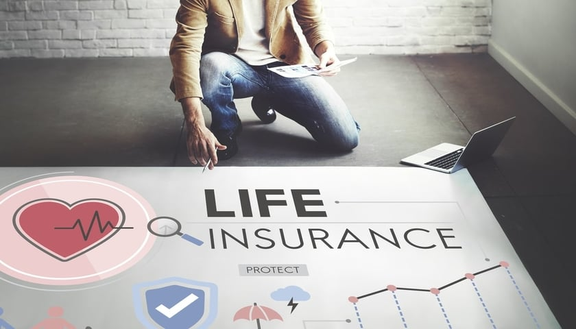 private life insurance vs govt. life insurance schemes