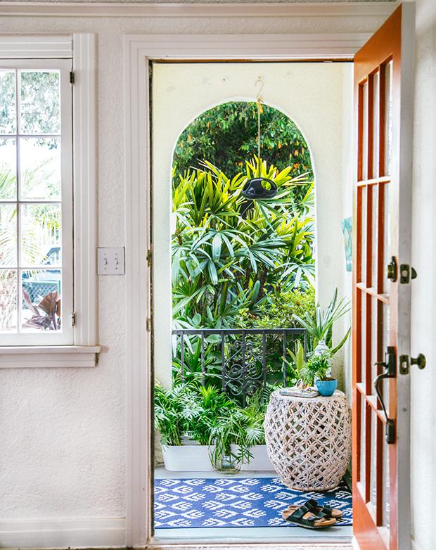 Plants near front door for good energy
