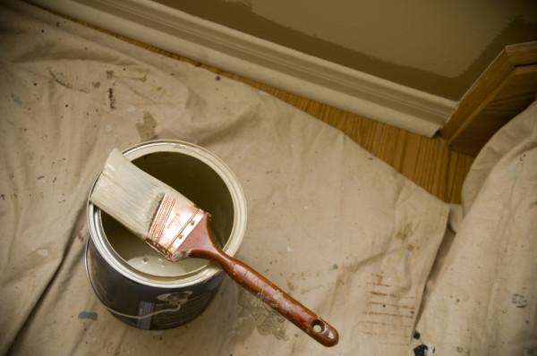 Paint Dropcloth