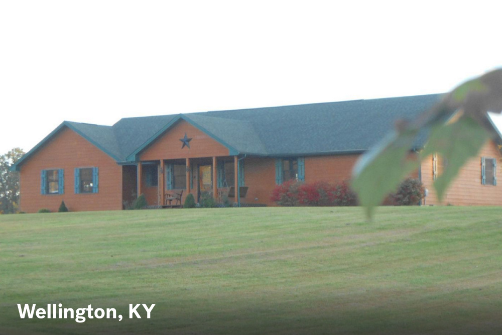 farmhouses for sale in Wellington KY