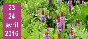 Journées des Plantes au Lac d'Aiguebelette les 23 et 24 avril 2016