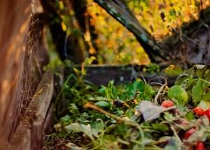 """Le premier """"Défi Compost"""" est organisé à Chambéry par Compost'Action"""