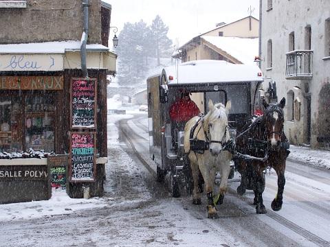 Trotti Bus