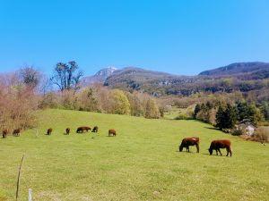 Derrière le Nivolet, le géopark des Bauges...