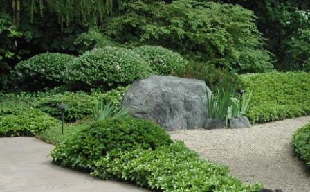 Plants To Use In A Japanese Garden 1000 Images About Japanese