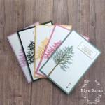 Niya Scrap - Swap de cartes - In Colors 2021-2023 - Matériel Stampin' Up!