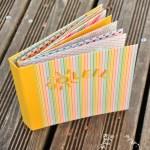 Niya Scrap - Mini-Album d'été - Blog Hop Sweet Ladybirds - Matériel Stampin' Up!