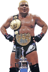 History of the IWGP Heavyweight
