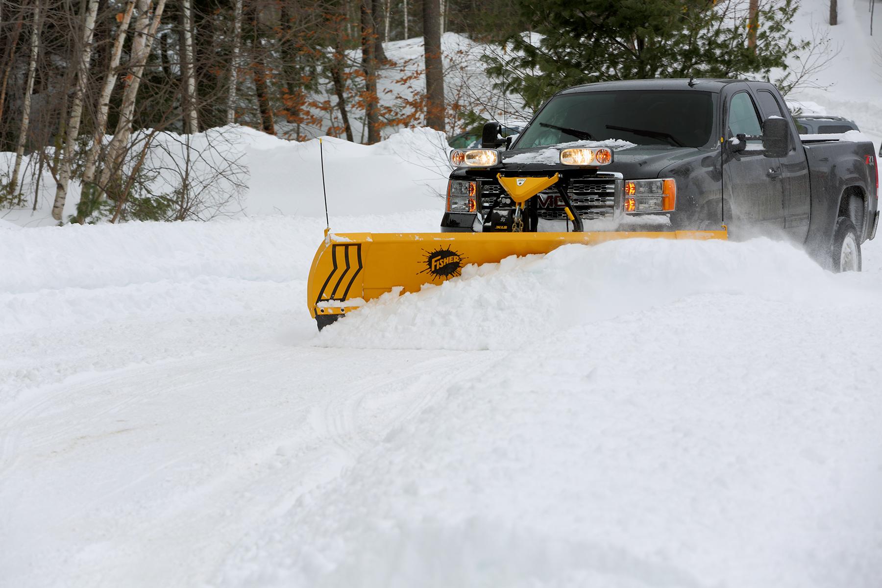 western plow lion life cycle diagram xls expandable length snow nj snowplows
