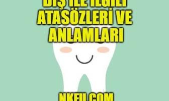 Diş ile İlgili Atasözleri ve Anlamları