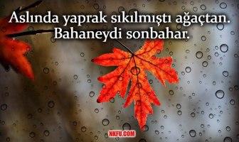 Sonbahar ile ilgili güzel sözler