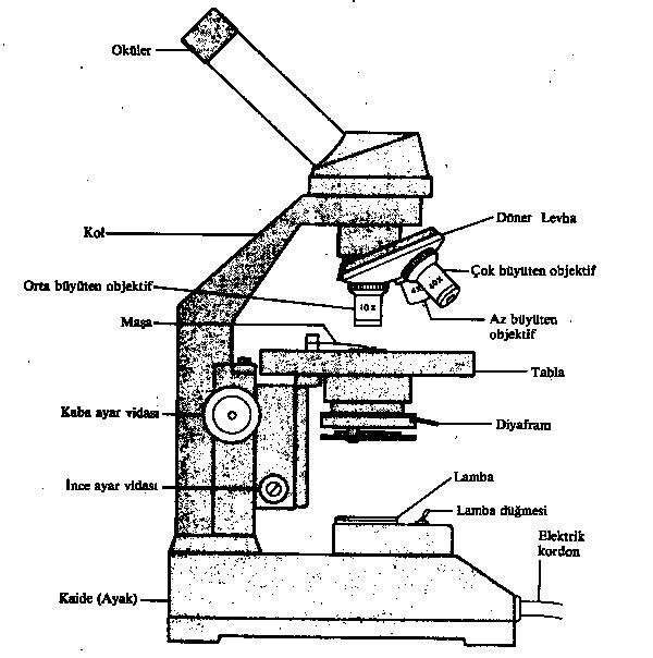 mikroskop-bolumleri