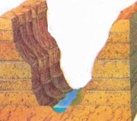 Koyaklar neredeyse dik açılı kenarlarıyla çok derin vadilerdir. En iyi bilinen örneklerinden biri ABD'deki Büyük Kanyon'dur.