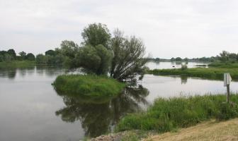 Oder Irmağı