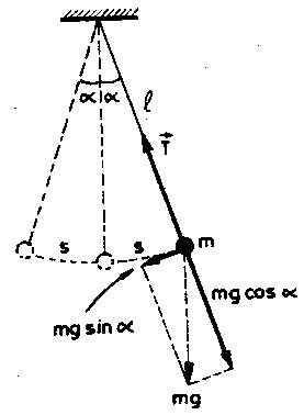 basit-sarkac-1