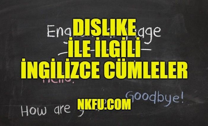 Dislike İle İlgili İngilizce Cümleler