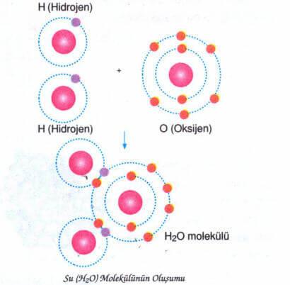 kovalent-bag-3